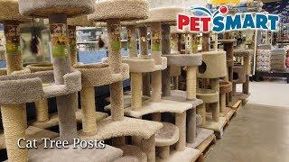 PetSmart Cat Tree Posts