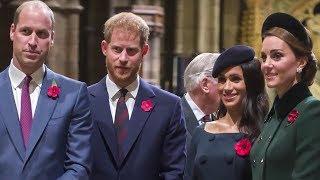 Royal Fab Four: Inside Their Tense Relationship