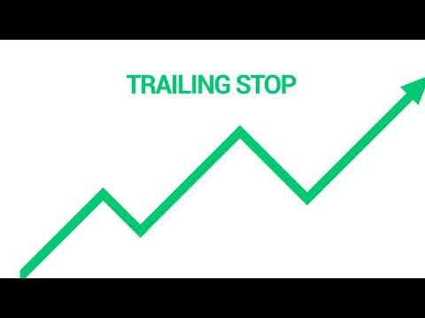 kas yra opcionų prekyba akcijų rinkos pavyzdžiu
