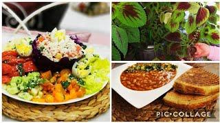 مطبخ لجين/الحل لمطلوع روعة مهما كانت نوعية السميد /. سلطة منوعة كطبق كامل للعشاء اكثار نبتة القطيفة