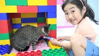 거대 블럭 장난감으로 고양이들 집을 만들어 줬어요! 어떤 집이 가장 멋있을까요? Color Brick Block Cat House