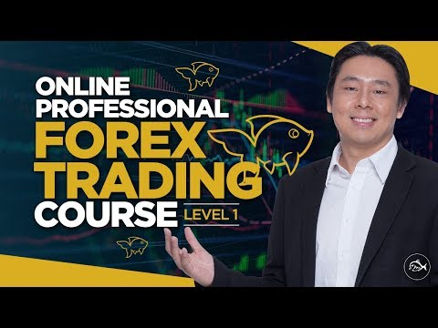mp4 Forex Investing Academy, download Forex Investing Academy video klip Forex Investing Academy