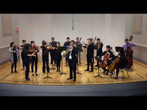 Mozart Horn Concerto No. 3 with Chamber Orchestra