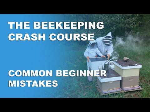 , title : 'Common Beginner Mistakes - Beekeeping Basics Part 12 - Beekeeping Crash Course