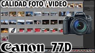 Canon EOS 77D | Calidad de fotos y videos