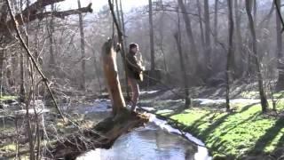 Video Na cestě (2011)