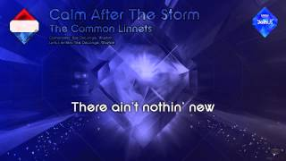 "The Common Linnets - ""Calm After The Storm"" (The Netherlands)"