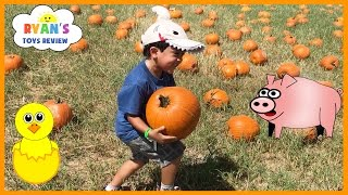 Kids Trip to the Farm with Halloween Pumpkin Patch!