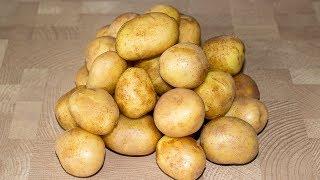 3 Оригинальных Рецепта из Обычного Картофеля 🥔 Простые Картофельные Рецепты ✧ Ирина Кукинг
