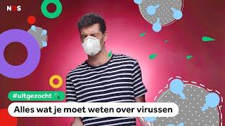 Hoe gevaarlijk zijn virussen (zoals corona) nou echt?   UITGEZOCHT #11