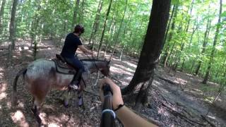 First Trail Ride on my Colt!