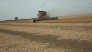 preview picture of video 'case IH 2188 soja - Ingeniero Luiggi La Pampa -'