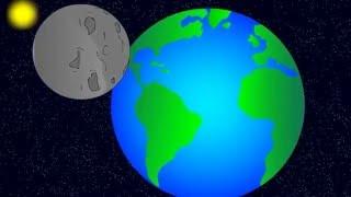 Menneskemanden - Animation