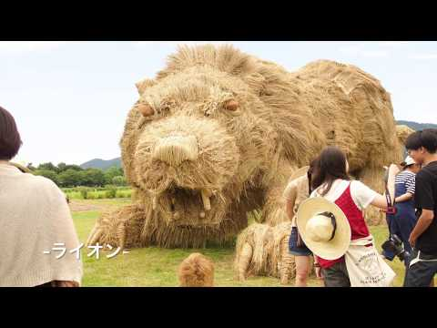 Creating Massive Rice Straw Animal Sculptures