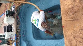 B&B Pools Renovation