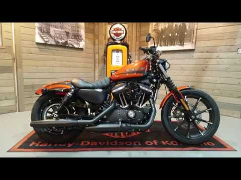 2020 Harley-Davidson Iron 883™ in Kokomo, Indiana - Video 1