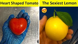 People Who Found The Most Odd Looking Food (NEW PICS!!)