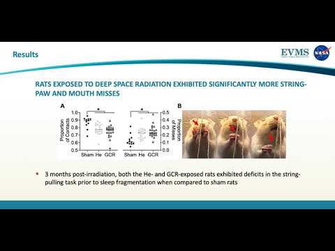 Thumbnail image of video presentation for Fine motor deficits exhibited in rat string-pulling behavior following exposure to deep space radiation and sleep fragmentation