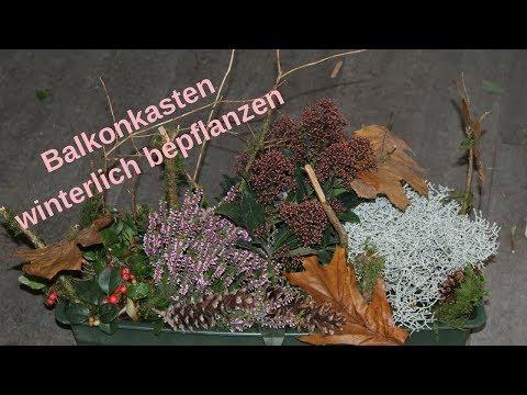 DIY - Winterdeko für draussen - Balkonkasten bepflanzen