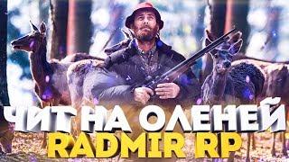 Как ловить оленей на radmir rp