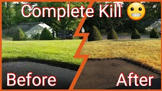 How To Kill Lawn And Start Over - Lawn Renovation Part 1