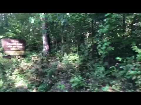 Video Of Sutton Bluff Recreation Area, MO