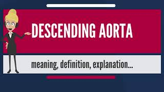 What is DESCENDING AORTA? What does DESCENDING AORTA mean? DESCENDING AORTA meaning