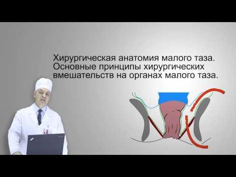 Норма секрета предстательной железы