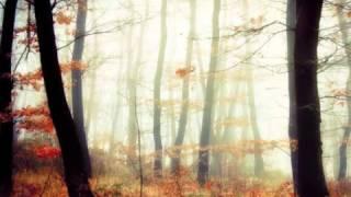 تحميل و مشاهدة ليندا بيطار- ألبوم مطرز/ بإيد عم ترجف MP3