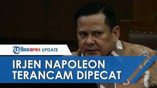 Irjen Napoleon Diperiksa 10 Jam soal Kasus Penganiayaan M Kece, Kini Terancam Dipecat dari Jabatan