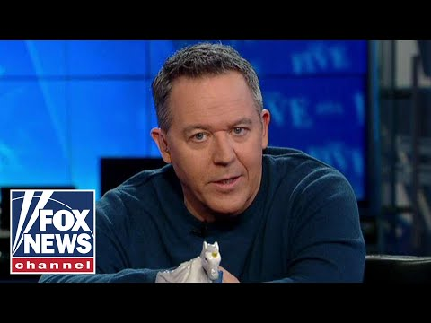 Gutfeld on calling Trump supporters a cult