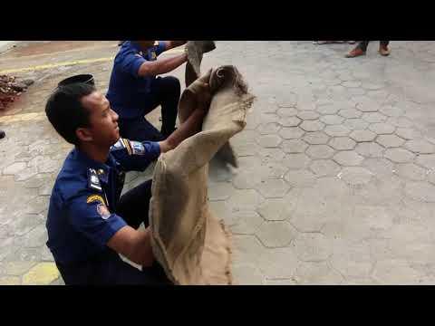 Penanggulangan Bencana BPJS Ketenagakerjaan Jakarta Cilandak