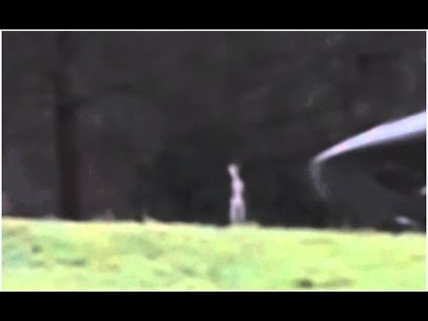 Real Grey Alien Caught On Tape 2014