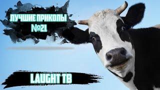 ПОДБОРКА СУПЕР СМЕШЫХ ПРИКОЛОВ НА ЧАШКУ ЧАЯ    ФЭЙЛЫ ЗА 2017   # 21