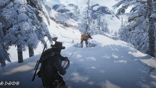Red Dead Redemption 2 - Hunting In Spider Gorge
