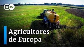 Agricultores: ¿Puede hacerse crecer el dinero? | DW Documental