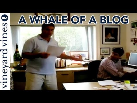 Shep and Ian Introduce The Vine, A Whale of A Blog | The vineyard vines Blog