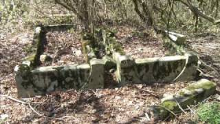 preview picture of video 'Kirkut w Lidzbarku Welskim (Jewish cemetery in Lidzbark - Lautenburg)'