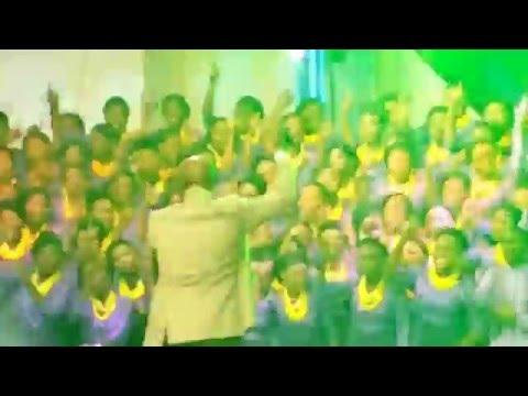 DAYSTAR CAROL - DING DONG & DANCE