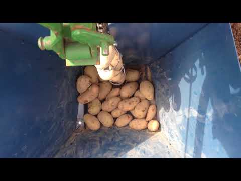 Semina Patate Autocostruito - Potato planting machine