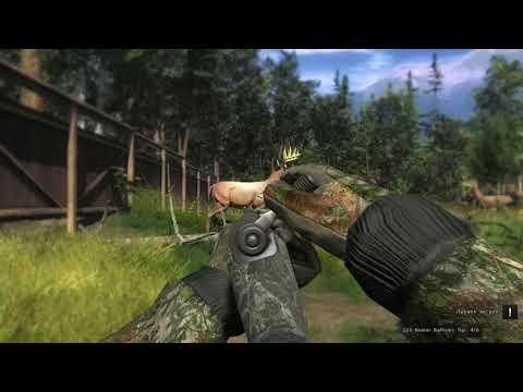 Звуки выстрелов/система перезарядки/всё огнестрельное охотничье оружие в игре theHunter Classic