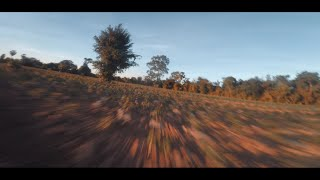 Fpv freestyle / Cine Juicy