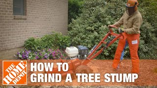 How To Grind A Tree Stump | The Home Depot