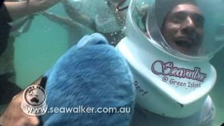 Great Barrier Reef Cairns Green Island Grease Walkers