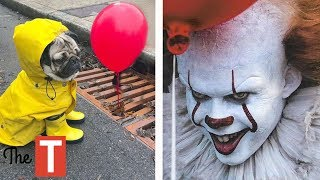 20 EPIC Pet Costume Ideas For Halloween (Pennywise From IT Movie, Wonder Woman)