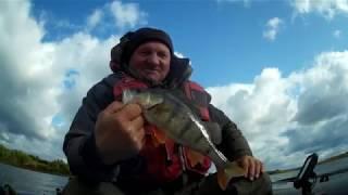 Рыбалка в лужском районе ленинградская области
