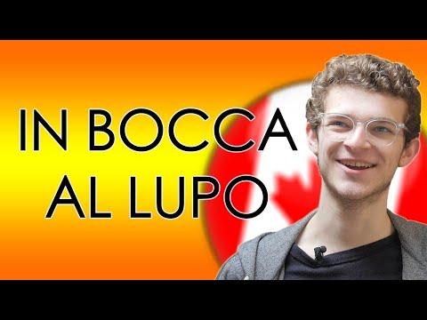 CANADESE reagisce ai MODI DI DIRE italiani - thepillow