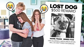 MY DOG IS MISSING! Please Help Me Find FRANK **Emotional News**🐶💔| Piper Rockelle