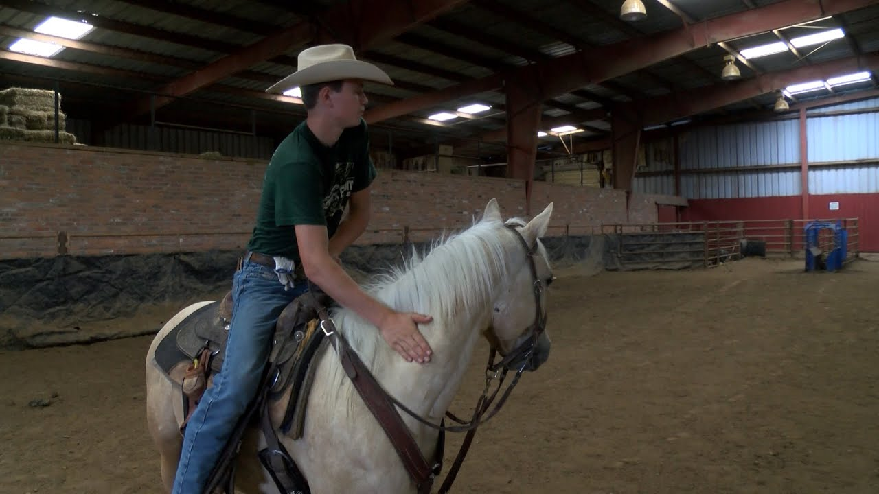 Open Video news story: Back in the Saddle