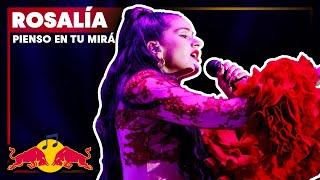 Rosalía – Pienso En Tu Mirá  Plaza De Colón Madrid   2018 Red Bull Music